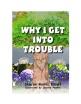 Trouble copy 2